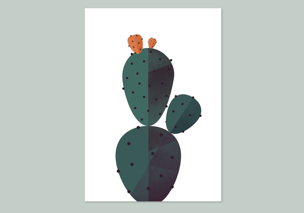 Maya Stepien | The Geometry of Biology: Cactus