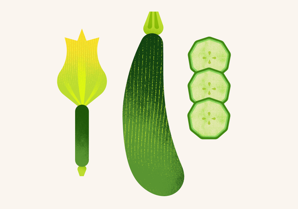 Maya Stepien | The Greenery | Courgette